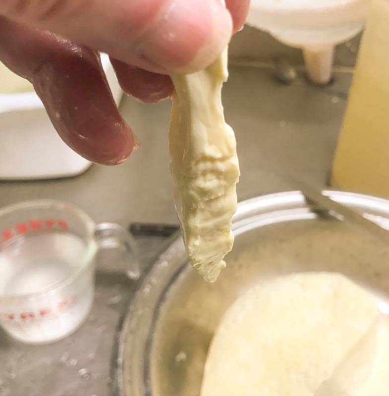 checking curds for mozzarella cheese